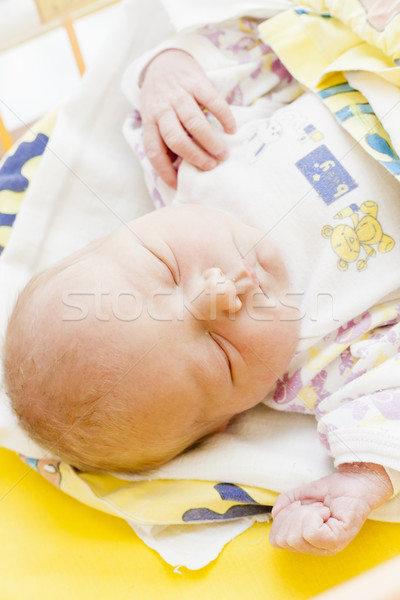 portrait of a newborn baby girl in maternal hospital Stock photo © phbcz