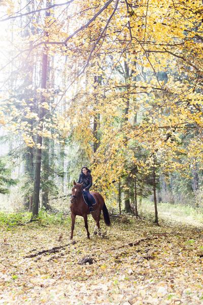 Lovas lóháton őszi természet nő nők Stock fotó © phbcz