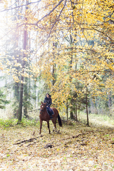 Paardenrug natuur vrouw vrouwen Stockfoto © phbcz