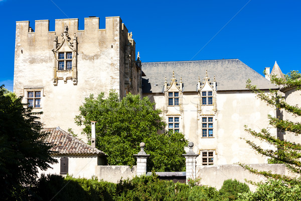 castle in Allemagne en Provence, Provence, France Stock photo © phbcz