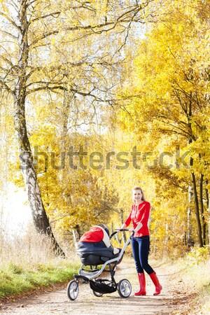 Kadın yürümek sonbahar geçit bebek Stok fotoğraf © phbcz