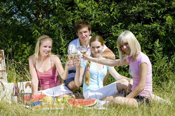 Barátok piknik nő bor férfi gyümölcs Stock fotó © phbcz