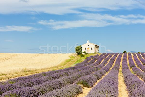Kaplica lawendy ziarna pola plateau budynku Zdjęcia stock © phbcz
