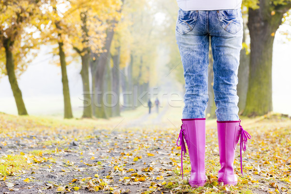 detail of woman wearing rubber boots in autumnal alley Stock photo © phbcz