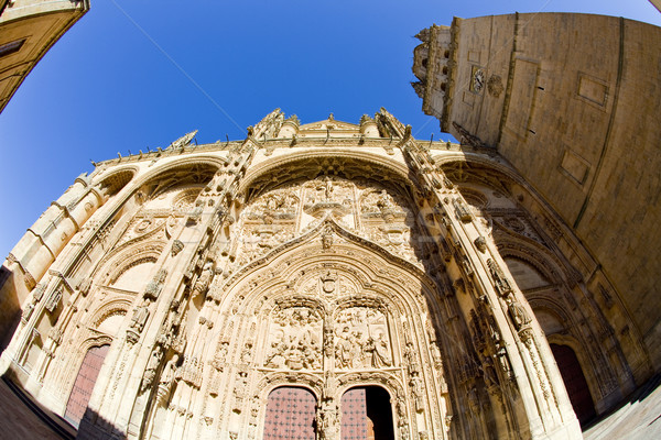 gothic cathedral in Salamanca, Castile and Leon, Spain Stock photo © phbcz