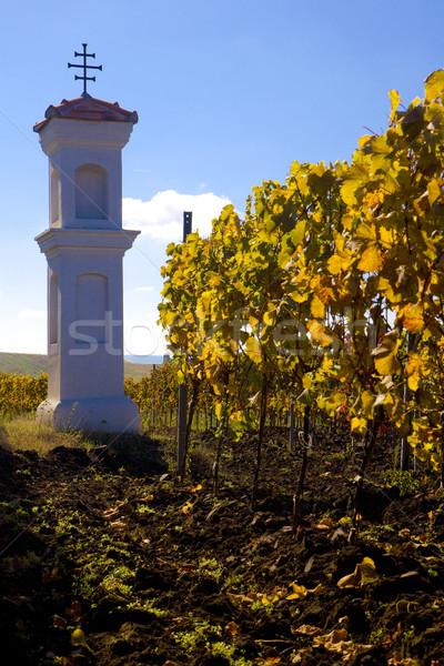 Village chapelle République tchèque paysage vignoble colonne Photo stock © phbcz