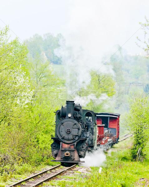 narrow gauge railway, Banovici, Bosnia and Hercegovina Stock photo © phbcz