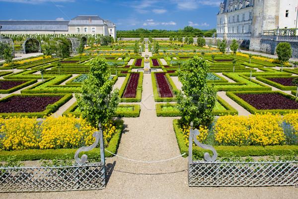 Villandry Castle''s garden, Indre-et-Loire, Centre, France Stock photo © phbcz