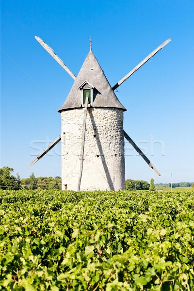 windmill with vineyard near Blaignan, Bordeaux Region, France Stock photo © phbcz