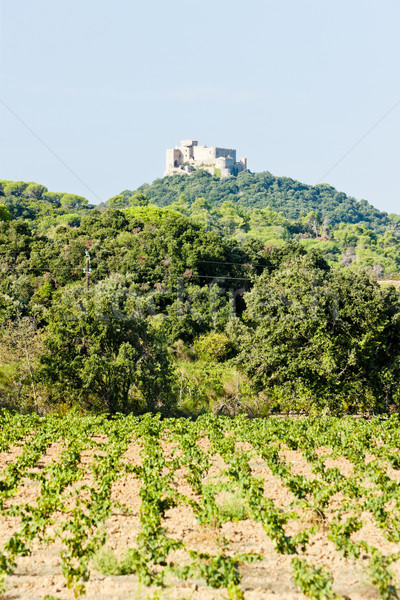 castle Saint Martin with vineyard, Languedoc-Roussillon, France Stock photo © phbcz