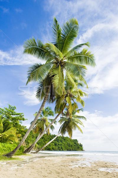 Stock photo: La Sagesse Bay, Grenada