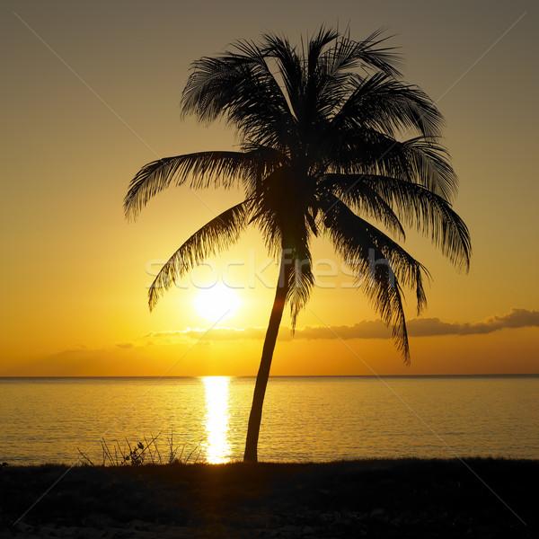 sunset over Caribbean Sea, Maria la Gorda, Pinar del Rio Provinc Stock photo © phbcz