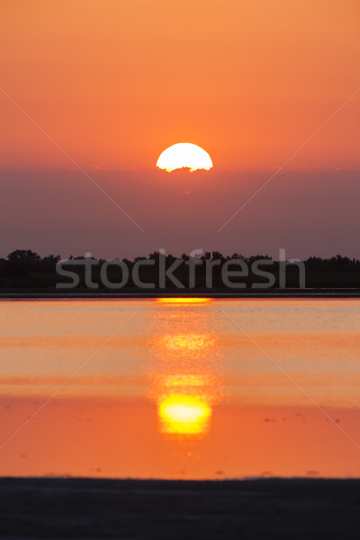 Stock photo: sunrise in Camargue, Provence, France