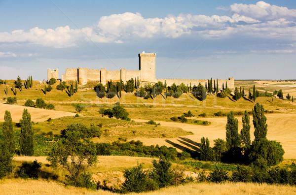 Penaranda de Duero Castle, Burgos Province, Castile and Leon, Sp Stock photo © phbcz