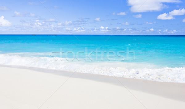 Barbados caribbean paisagem mar férias paraíso Foto stock © phbcz