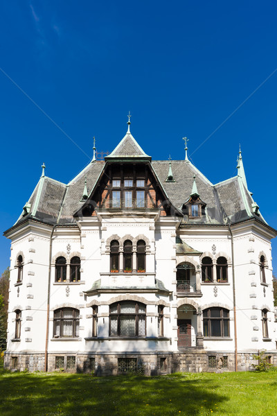 villa of Riedl, Desna, Czech Republic Stock photo © phbcz