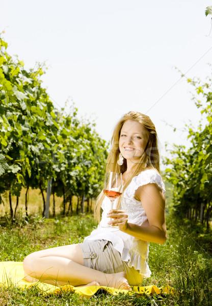 Stock fotó: Nő · piknik · szőlőskert · bor · szemüveg · fiatal