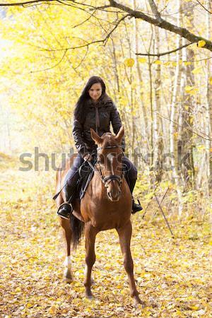 Paardenrug natuur vrouwen paard Stockfoto © phbcz