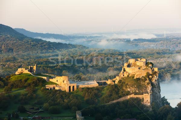 Ruinas castillo Eslovaquia edificio viaje arquitectura Foto stock © phbcz
