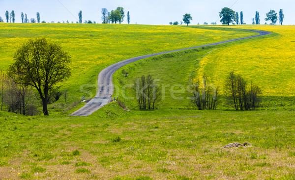 Stock photo: spring landscape with a road, Czech Republic