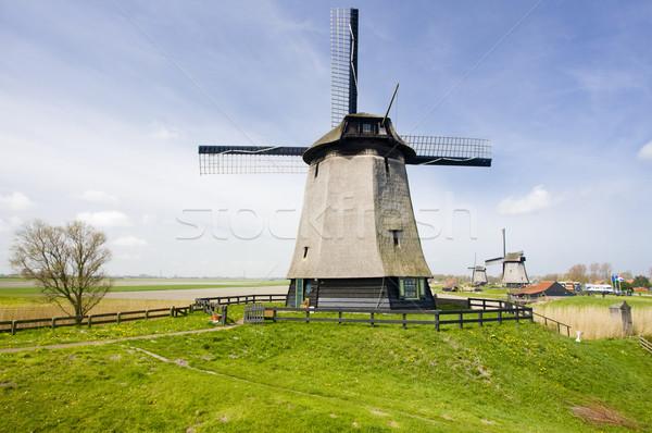 Нидерланды путешествия Windmill мельница Открытый за пределами Сток-фото © phbcz