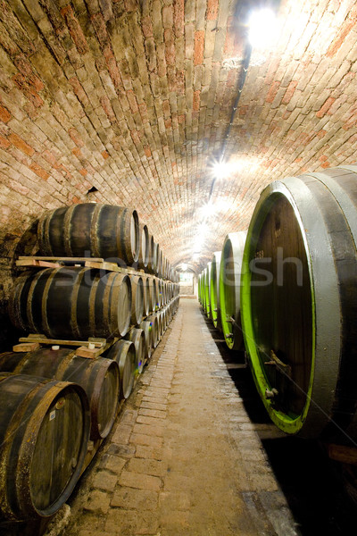 wine cellar, Jaroslavice, Czech Republic Stock photo © phbcz