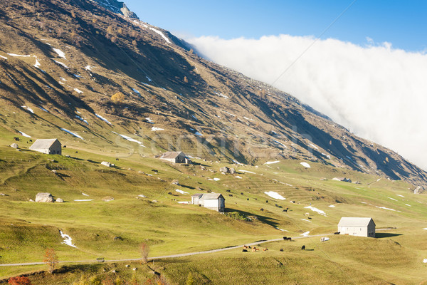 Alps landscape near Andermatt, canton Graubunden, Switzerland Stock photo © phbcz
