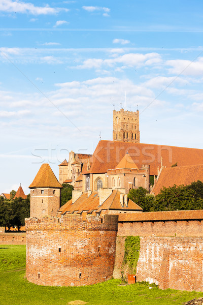 Château Pologne bâtiment Voyage architecture Europe Photo stock © phbcz