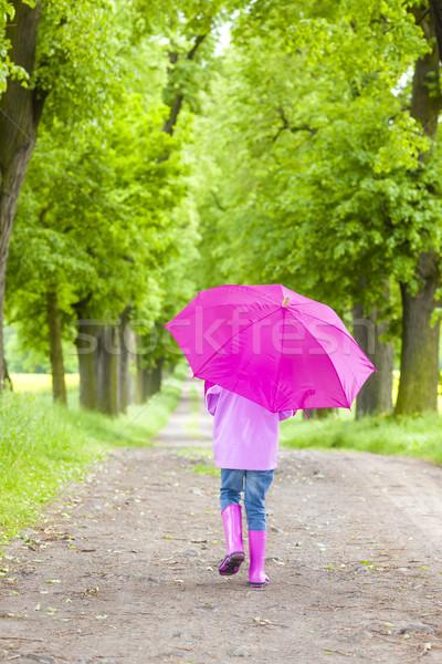 Küçük kız şemsiye bahar geçit Stok fotoğraf © phbcz