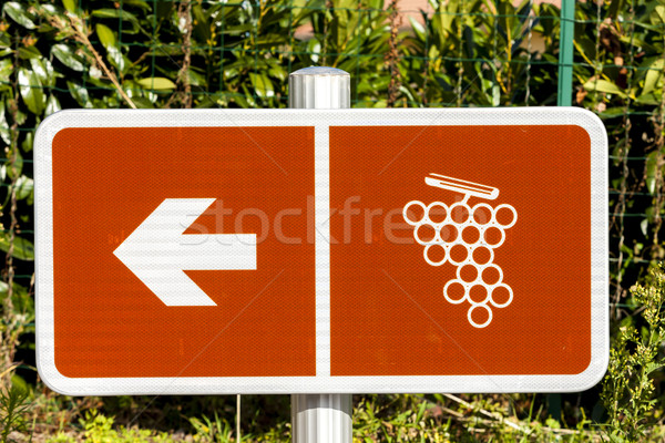 wine route, Beaujolais, Rhone-Alpes, France Stock photo © phbcz