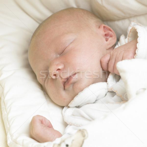Dormire baby mani ragazzi bambino ragazze Foto d'archivio © phbcz