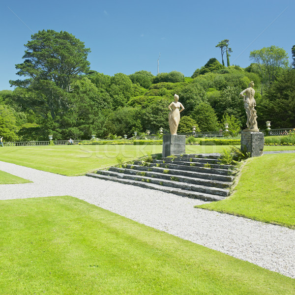 Huis tuin kurk Ierland planten standbeeld Stockfoto © phbcz