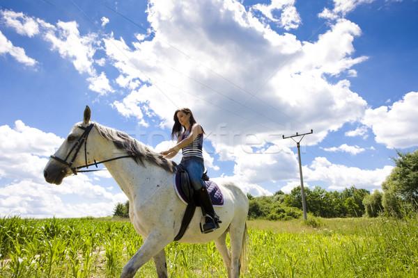 馬に乗って 女性 動物 小さな 馬 ストックフォト © phbcz