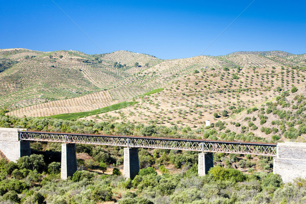 railway viaduct near border of Portugal, Castile and Leon, Spain Stock photo © phbcz