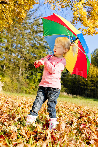 little girl with umbrella in autumnal nature Stock photo © phbcz