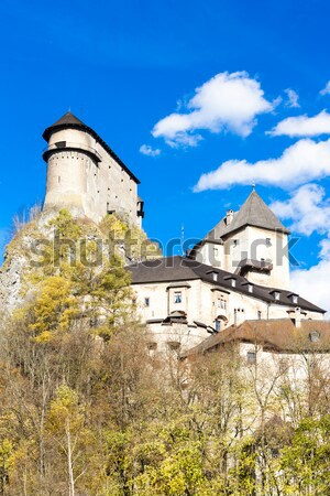 Kasteel Slowakije reizen architectuur Europa geschiedenis Stockfoto © phbcz