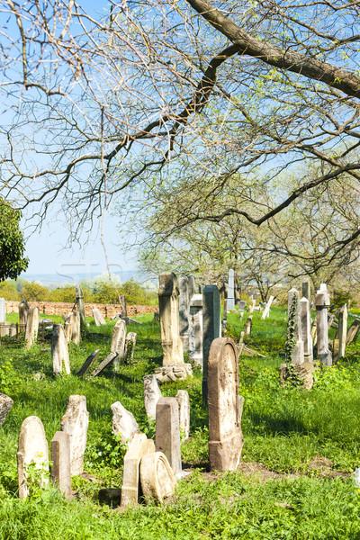 Jewish Cemetery, Podivin, Czech Republic Stock photo © phbcz