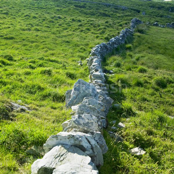 каменной стеной голову полуостров пробка Ирландия Сток-фото © phbcz