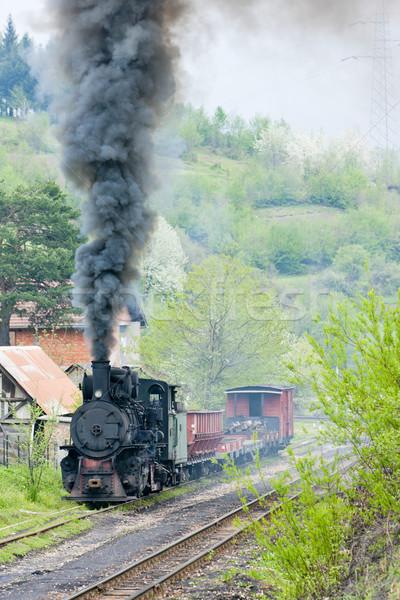 狭い ゲージ 鉄道 列車 蒸気 屋外 ストックフォト © phbcz