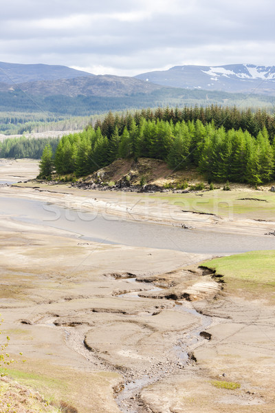 landscape near Loch Laggan, Highlands, Scotland Stock photo © phbcz