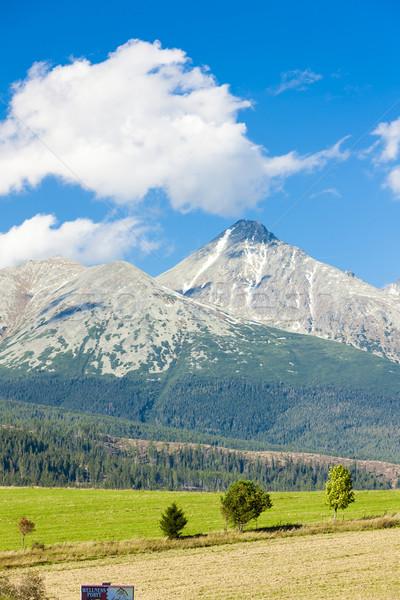 Berg westerse hoog Slowakije landschap bergen Stockfoto © phbcz