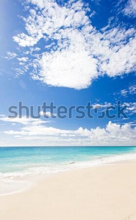 Przedsiębiorstwo plaży Barbados Karaibów chmury krajobraz Zdjęcia stock © phbcz