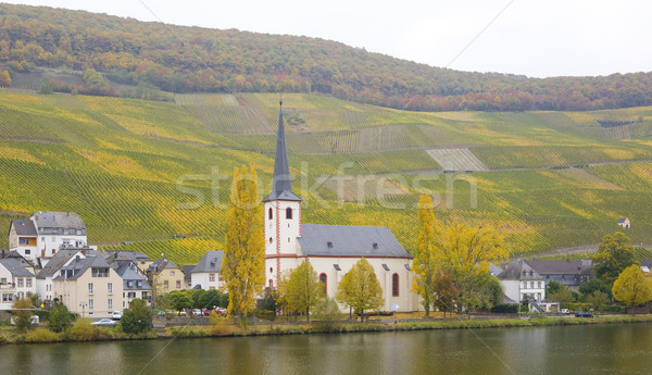 Piesport, Rheinland Pfalz, Germany Stock photo © phbcz