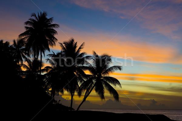 sunset over Caribbean Sea, Turtle Beach, Tobago Stock photo © phbcz