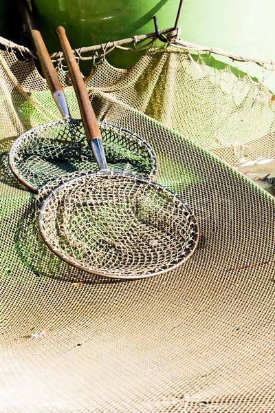 landing nets Stock photo © phbcz