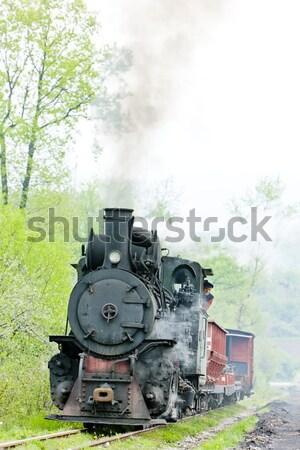 狭い ゲージ 鉄道 輸送 蒸気 屋外 ストックフォト © phbcz