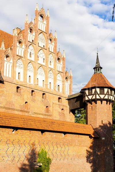 Castello Polonia costruzione viaggio architettura Europa Foto d'archivio © phbcz