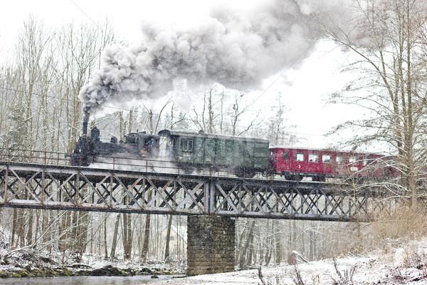 пар поезд Чешская республика снега дым зима Сток-фото © phbcz