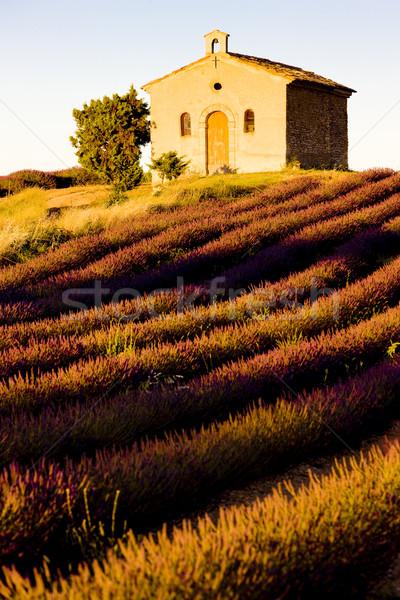 Capela campo de lavanda planalto flor flores edifício Foto stock © phbcz