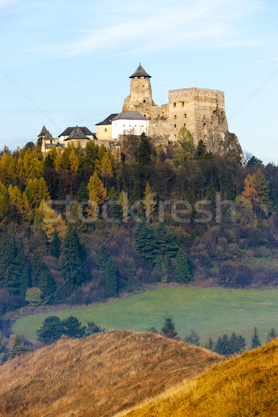 Stara Lubovna Castle, Slovakia Stock photo © phbcz